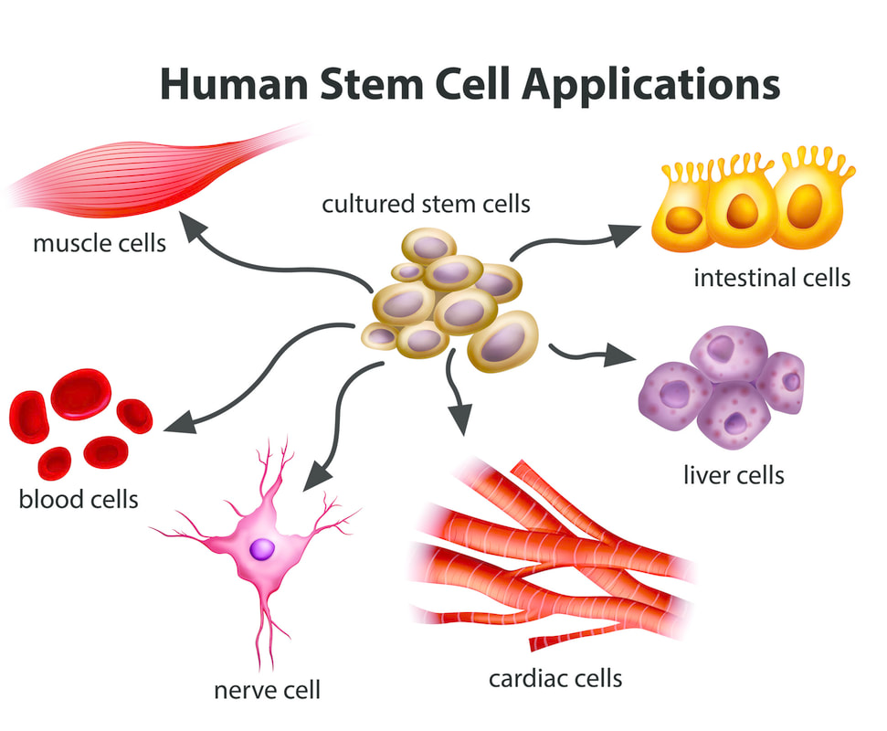 what are the benefits of stem cell therapy